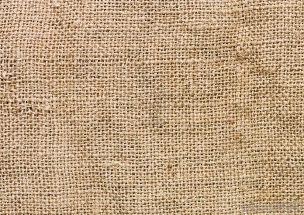 advanced cloth workshop downloader